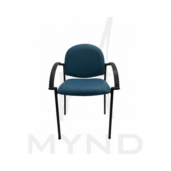 SAMPLE - Study Armchair - Elderly Aged Care Chair